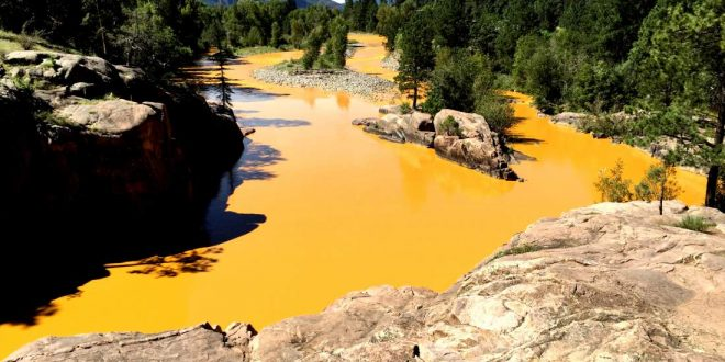 Mine Waste Spills into Colorado's Animas River