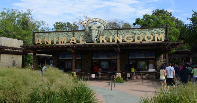 Family Plans to Sue Disney's Animal Kingdom After Snake Bite on 8-Year-Old Boy