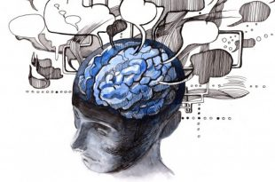 Researchers Publish New Findings About How Schizophrenia Develops