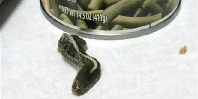 Farmington, Utah: Woman Find Snake's Head in Can of Green Beans