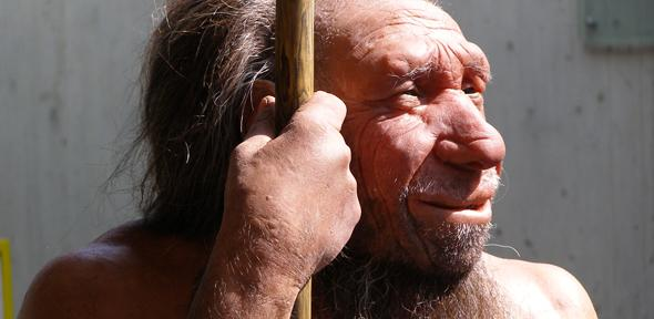 Neanderthals: Study Suggests Species of Human Went Extinct Due to Tropical Disease