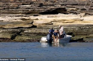River Monsters Film Crew Finds Man Stranded on Barranyi North Island in Australia