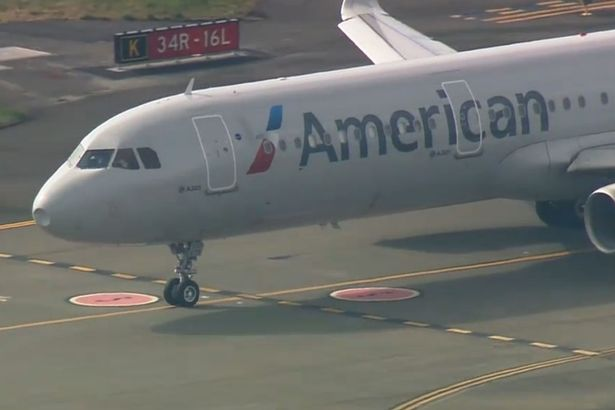 American Airlines plane left with massive dent in nose after bird strike