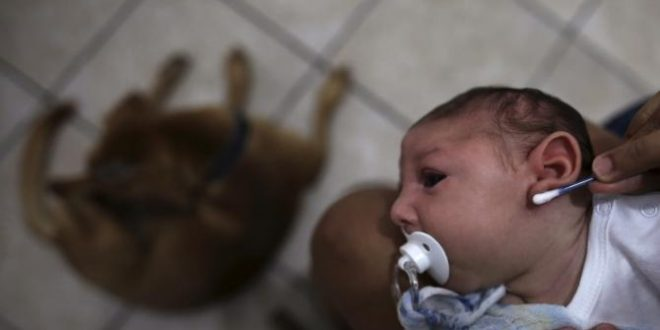 Definitive Connection Made between Birth Defects and Zika virus