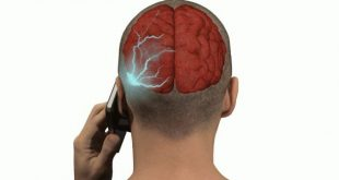 National Toxicology Program: 2-Year Study Links Cellphone Radiation to Cancer in Rats