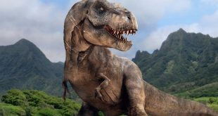 Tyrannosaurus Rex May Have Had Lips That Hid Teeth, Research Suggests