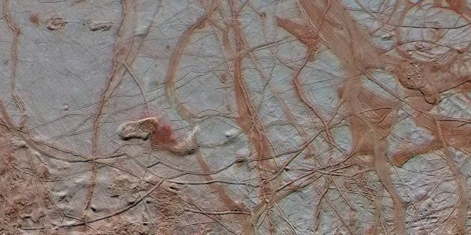 Europa: Jupiter Moon May Hold Enough Energy to Support Life, Study Finds