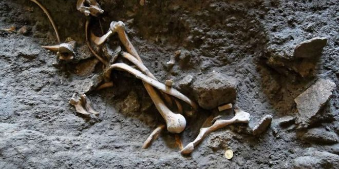 Skeletons, Coins Found in Dig of Ancient Pompeii Shop