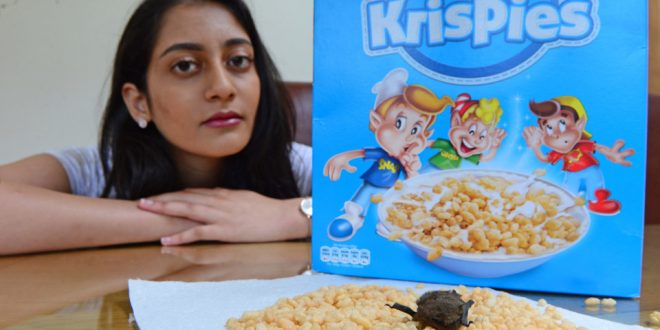Horrified Scottish Teen Found Dead Bat in Rice Krispies Box