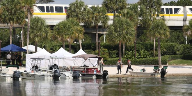 Body of 2-Year-Old Dragged Into Water by Alligator Near Disney's Grand Floridian Resort & Spa Found