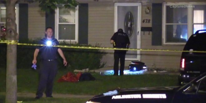 Buffalo Grove, Illinois: 4 People, Dog Stabbed in Apparent Home Invasion