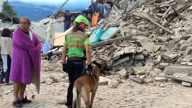 Sniffer dogs scoured the rubble for signs of life