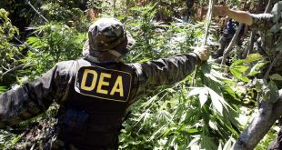 DEA: Medical Marijuana Won't Become Legal Anytime Soon