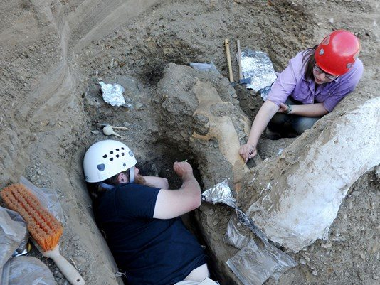 Rare Mammoth Fossil Found in California National Park