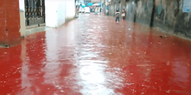 Rivers Of Blood: Streets of Dhaka Turn Red After Eid Animal Sacrifices