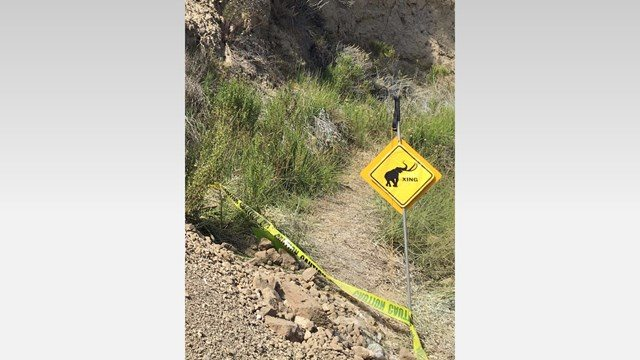 "Researchers posted a ""mammoth crossing"" sign at the excavation site. (Photo: STAR FILE PHOTO)"