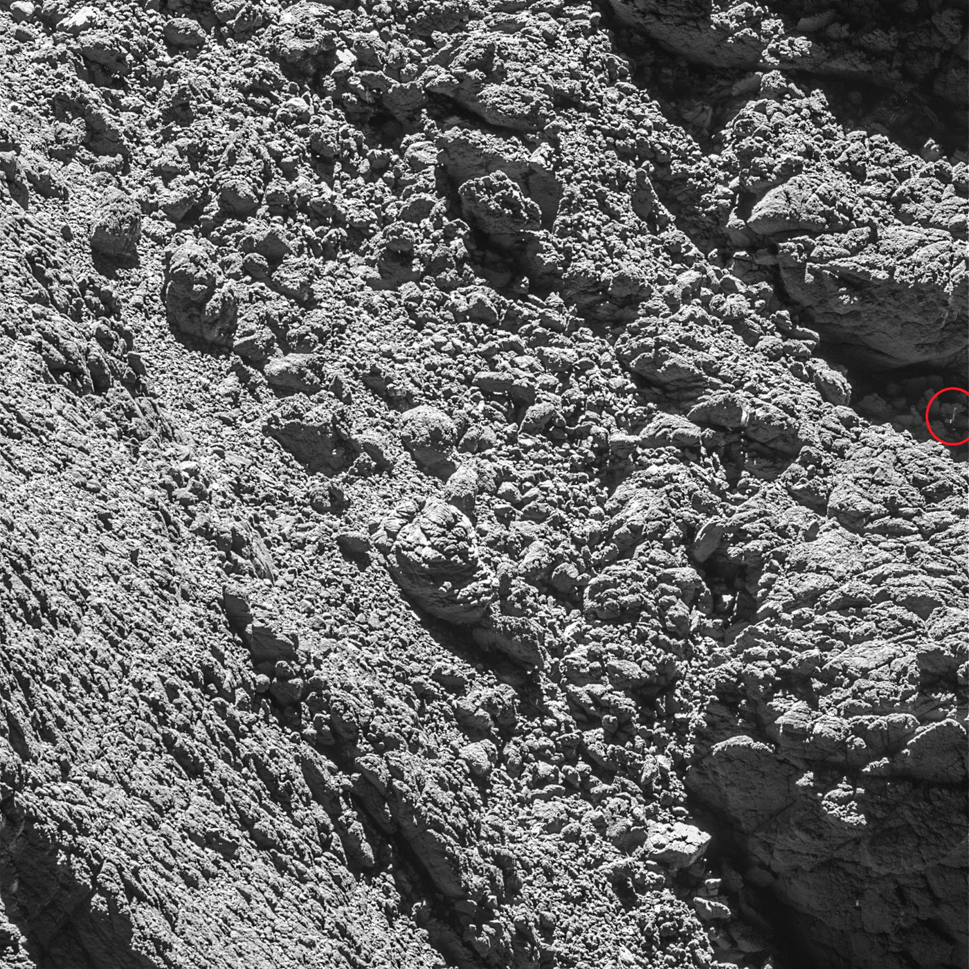 This image from Rosetta's OSIRIS narrow-angle camera is the discovery image that finally spotted the Philae lander (which we've identified in a red circle at far right, near center). Credit: ESA/Rosetta/MPS for OSIRIS Team MPS/UPD/LAM/IAA/SSO/INTA/UPM/DASP/IDA