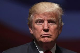 Donald Trump: There's 'Zero Chance I'll Quit' Race