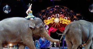 Ringling Bros. Circus Closure