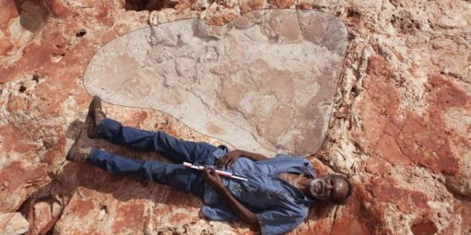 World's Biggest Dinosaur Footprints Found in North-Western Australia