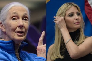 Jane Goodall Kindly Asks Ivanka Trump To Actually Take Her Advice