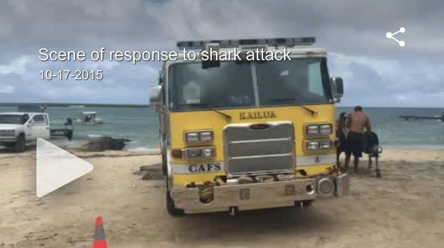 VIDEO Man in Serious Condition After Shark Attack at Lanikai Beach in Kailua, Hawaii