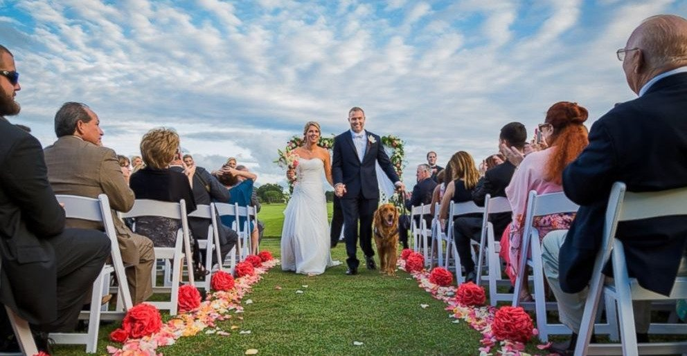 Wounded US Army Veteran's Therapy Dog Serves as Best Man at Wedding