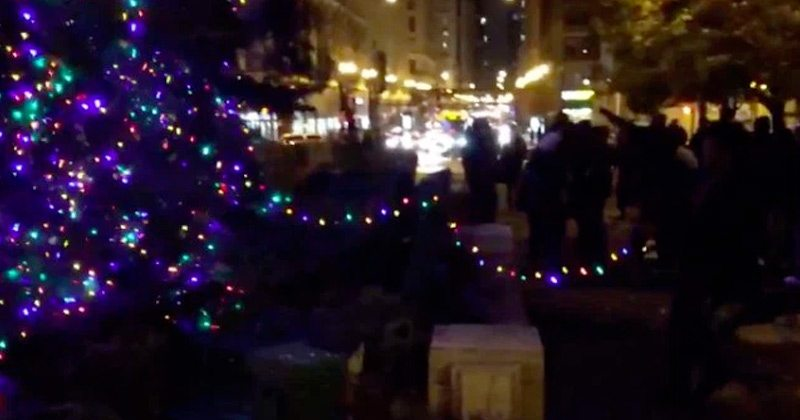 Protesters Rip Lights Off Chicago Christmas Tree