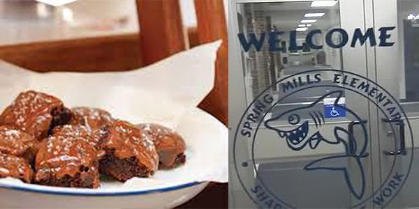 Highland Township, Michigan: Marijuana Laced Brownies at School Send Teacher to Hospital