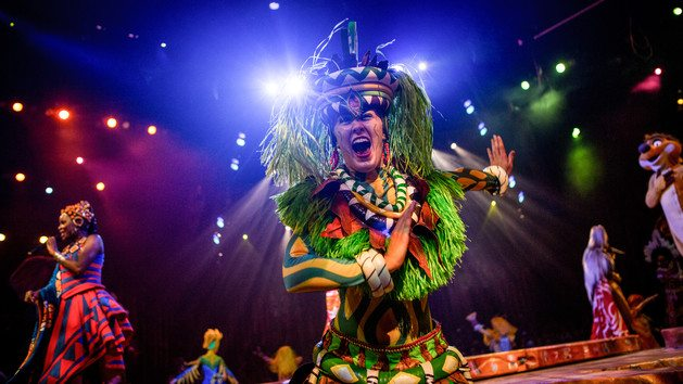 VIDEO Fire Breaks Out at Disney Festival of the Lion King