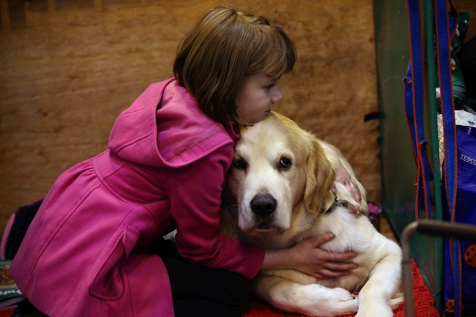 Researcher's Study Finds That Dogs Feel Uncomfortable When Hugged by Humans