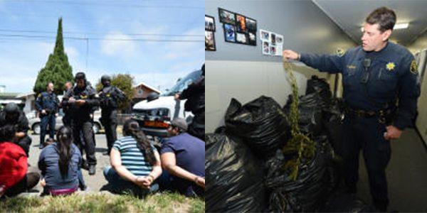 East Oakland, California: 10 Marijuana Grow Houses Linked to Mexican Cartel
