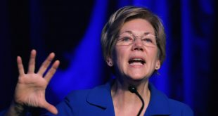 """Senator Elizabeth Warren Highlights that Trump is a """"Racist Bully"""" and that a Vote for Jill Stein Would Only Help Trump"""