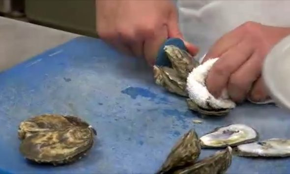 Man Dies After Contracting Vibrio from Eating Oysters at North Carolina Coast